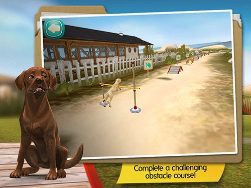Screenshots of the Dog hotel game for iPhone, iPad or iPod.