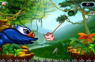 Screenshots of the e-Pig Rope game for iPhone, iPad or iPod.