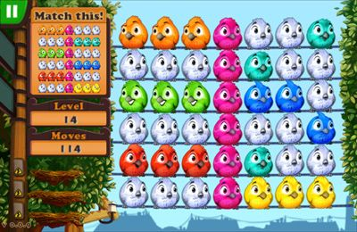 Free Fluffy Birds download for iPhone, iPad and iPod.