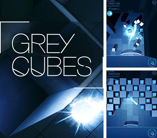 In addition to the game Kung Fu Master: Pig for iPhone, iPad or iPod, you can also download Grey cubes for free.