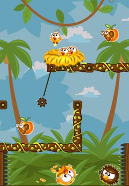 Screenshots vom Spiel Hungry Chicks für iPhone, iPad oder iPod.