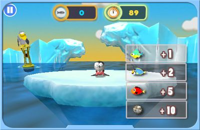 Download Hungry Seal iPhone free game.