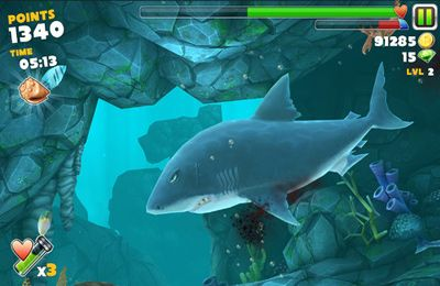 Геймплей Hungry Shark Evolution для Айпад.