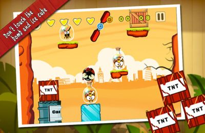 Descarga gratuita de KungFu Bugs para iPhone, iPad y iPod.