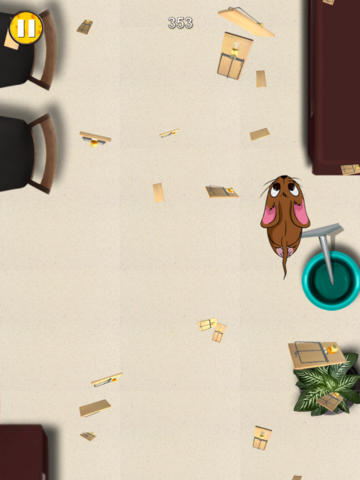Free Mouse Chase download for iPhone, iPad and iPod.