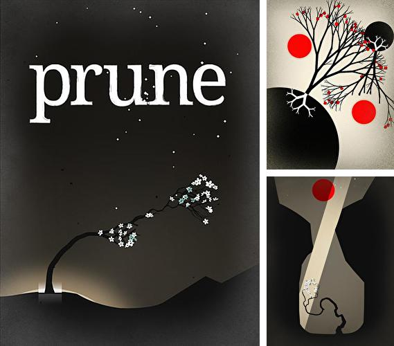 In addition to the game Totemo for iPhone, iPad or iPod, you can also download Prune for free.