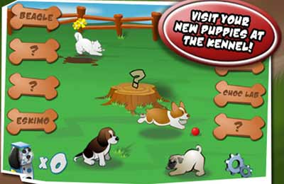 Screenshots of the Puppy Panic game for iPhone, iPad or iPod.