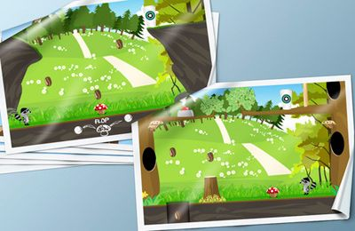 Screenshots of the RaccoonRoll game for iPhone, iPad or iPod.