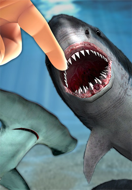 Kostenloser Download von Shark Fingers! 3D Interactive Aquarium für iPhone, iPad und iPod.