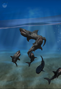 Screenshots vom Spiel Shark Fingers! 3D Interactive Aquarium für iPhone, iPad oder iPod.