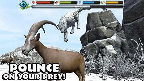 Download Snow leopard simulator iPhone free game.