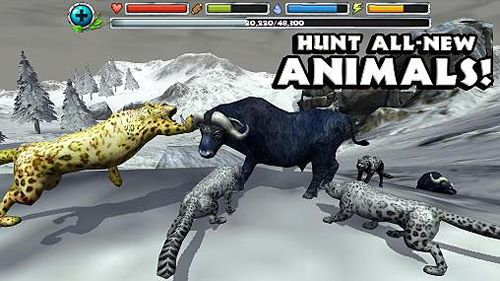 Screenshots of the Snow leopard simulator game for iPhone, iPad or iPod.