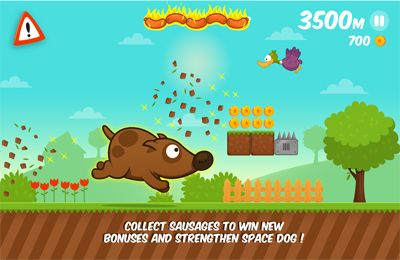 Download Space Dog Run iPhone free game.