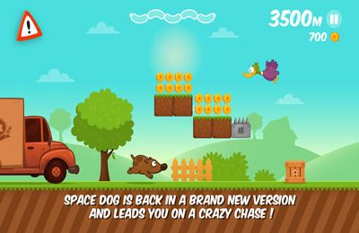Free Space Dog Run download for iPhone, iPad and iPod.