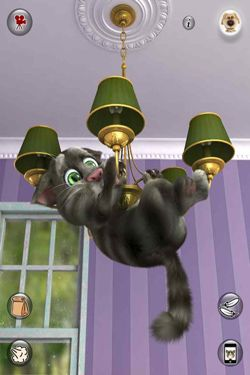 Écrans du jeu Talking Tom Cat 2 pour iPhone, iPad ou iPod.