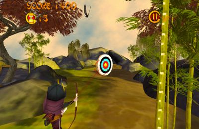 Download The Crow – The Best Shot iPhone free game.