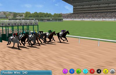 Screenshots do jogo Virtual Horse Racing 3D para iPhone, iPad ou iPod.