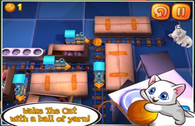 Download Wake the Cat iPhone free game.