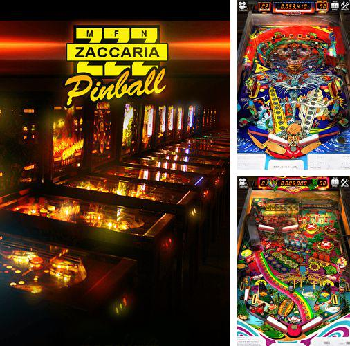 Download Zaccaria pinball iPhone free game.