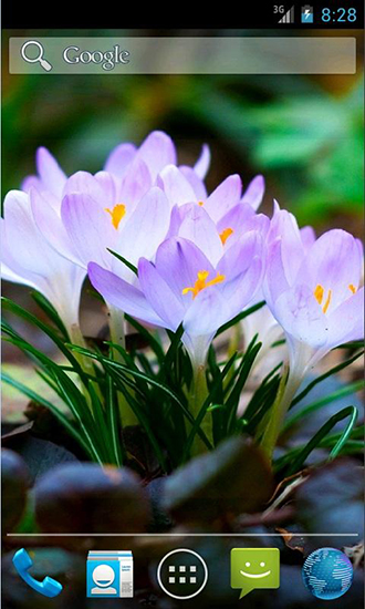 Download Amazing spring flowers - livewallpaper for Android. Amazing spring flowers apk - free download.