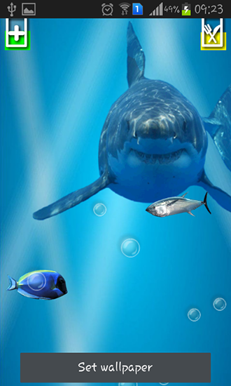 Download livewallpaper Angry shark: Cracked screen for Android. Get full version of Android apk livewallpaper Angry shark: Cracked screen for tablet and phone.