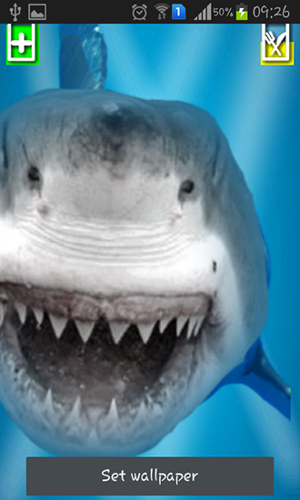 Download Angry shark: Cracked screen - livewallpaper for Android. Angry shark: Cracked screen apk - free download.