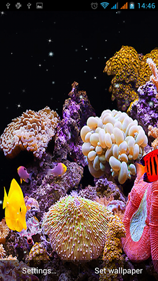 Aquarium by Best Live Wallpapers Free live wallpaper for Android. Aquarium by Best Live Wallpapers Free free download for tablet and phone.