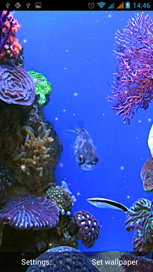 Fondos de pantalla animados a Aquarium by Best Live Wallpapers Free para Android. Descarga gratuita fondos de pantalla animados Acuario.