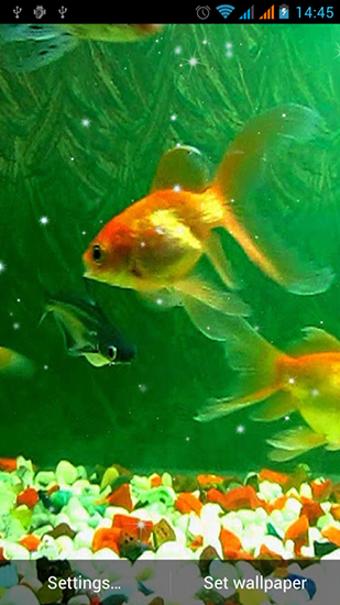 Capturas de pantalla de Aquarium by Best Live Wallpapers Free para tabletas y teléfonos Android.