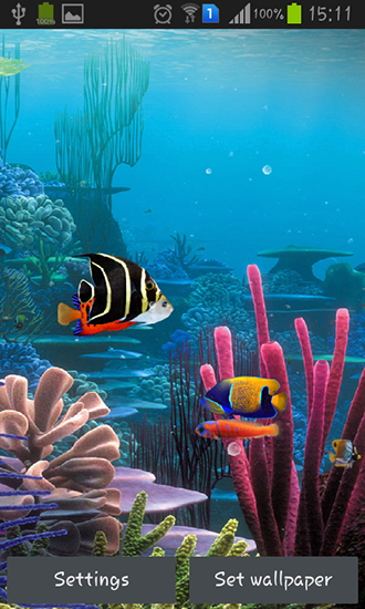 Download livewallpaper Aquarium by Cowboys for Android. Get full version of Android apk livewallpaper Aquarium by Cowboys for tablet and phone.