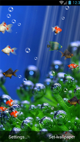 Screenshots of the Aquarium by minatodev for Android tablet, phone.