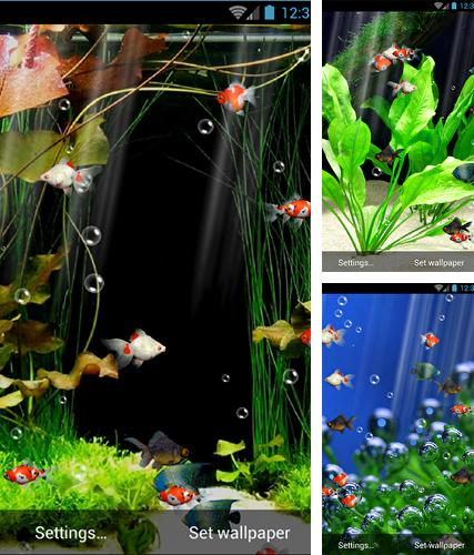Download live wallpaper Aquarium by minatodev for Android. Get full version of Android apk livewallpaper Aquarium by minatodev for tablet and phone.