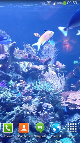 Download livewallpaper Aquarium HD 2 for Android. Get full version of Android apk livewallpaper Aquarium HD 2 for tablet and phone.