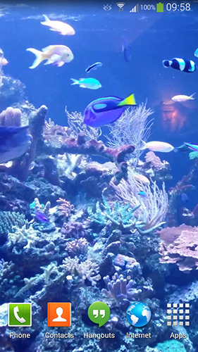 Download Aquarium HD 2 - livewallpaper for Android. Aquarium HD 2 apk - free download.