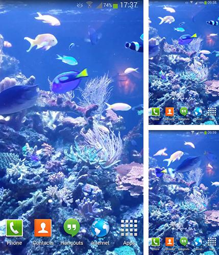 Aquarium HD 2 live wallpaper for Android. Aquarium HD 2 free download for tablet and phone.