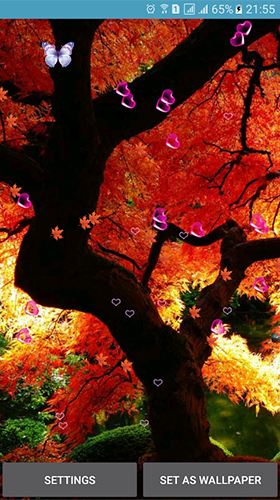 Download Autumn by 3D Top Live Wallpaper - livewallpaper for Android. Autumn by 3D Top Live Wallpaper apk - free download.
