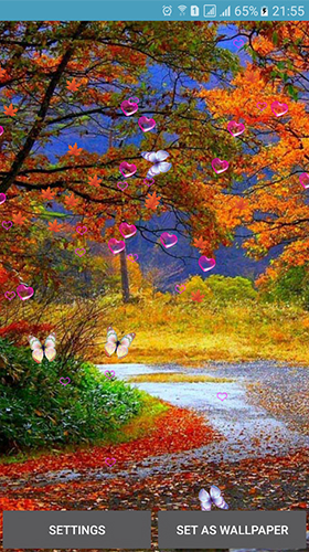 Screenshots of the Autumn by 3D Top Live Wallpaper for Android tablet, phone.