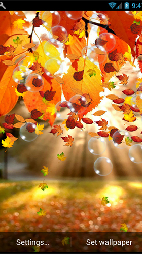 Screenshots of the Autumn by minatodev for Android tablet, phone.