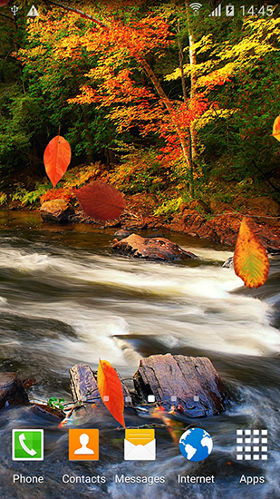 Download Autumn forest - livewallpaper for Android. Autumn forest apk - free download.