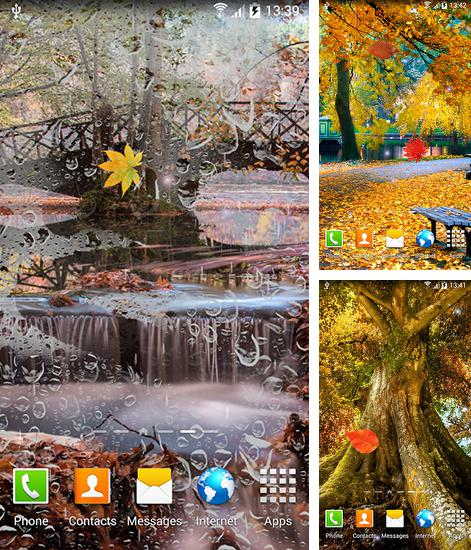 In addition to live wallpaper Magic water lilies for Android phones and tablets, you can also download Autumn landscape for free.