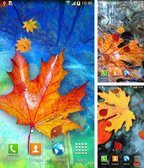 In addition to live wallpaper Romantic hearts for Android phones and tablets, you can also download Autumn leaves for free.