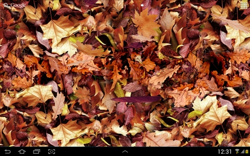 Autumn leaves 3D live wallpaper for Android  Autumn leaves 3D free