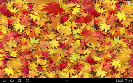 Download livewallpaper Autumn leaves 3D for Android. Get full version of Android apk livewallpaper Autumn leaves 3D for tablet and phone.