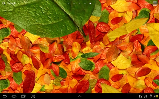 Screenshots of the Autumn leaves 3D for Android tablet, phone.