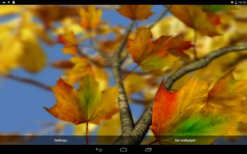 Descargar autumn leaves 3d by alexander kettler para - Descargar autumn leaves ...