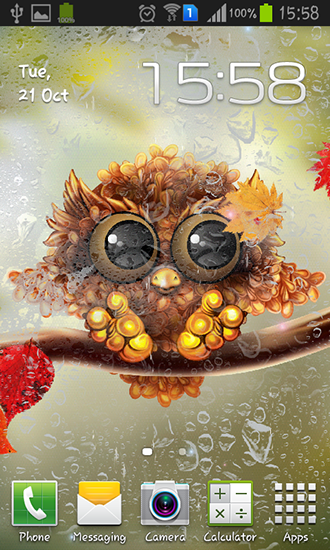 Download livewallpaper Autumn little owl for Android. Get full version of Android apk livewallpaper Autumn little owl for tablet and phone.