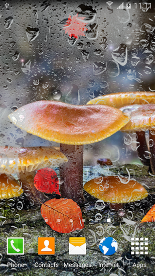 Download livewallpaper Autumn mushrooms for Android. Get full version of Android apk livewallpaper Autumn mushrooms for tablet and phone.