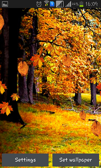 Download livewallpaper Autumn rain for Android. Get full version of Android apk livewallpaper Autumn rain for tablet and phone.