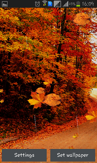 Download Autumn rain - livewallpaper for Android. Autumn rain apk - free download.