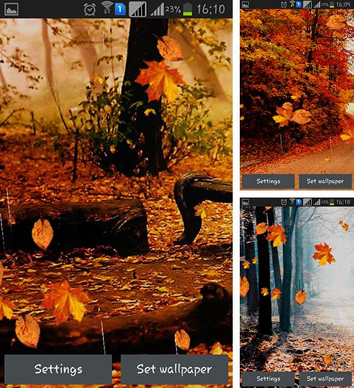 In addition to live wallpaper Spring flowers: Rain for Android phones and tablets, you can also download Autumn rain for free.